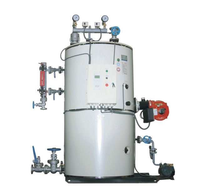 小型立式蒸汽锅炉燃气蒸汽锅炉