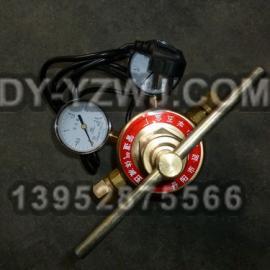 CO2电加热减压器