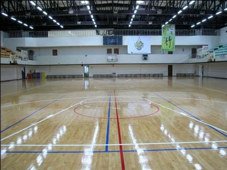 室内篮球场专用照明灯/led球场照明灯