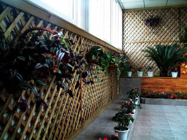杭州防腐木,花架,围栏