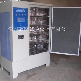 HBY-40B水泥砼恒温恒湿养护箱
