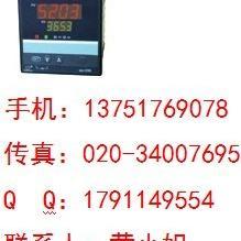 WP-D725-012-2312-HL-P数显调节仪