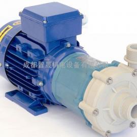 意大利艾格尔磁场泵0.6.10
