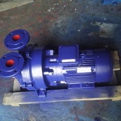 2BV5110水�h真空泵