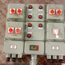 �C房�板防爆控制箱/6回路防爆控制箱�S家/BXK