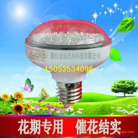 led植物补光灯 花果期专用补光灯 led植物生长灯