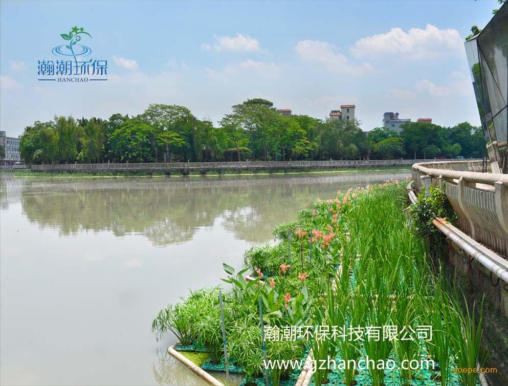 黑臭河道修复的规划设计中都加入了生态修复部分,包括水质整治,堤岸图片