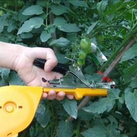 深圳绑枝机代工、河南葡萄绑枝机代理、番茄绑枝钳批发