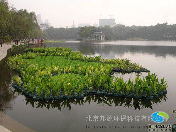 生态风景圆形图片