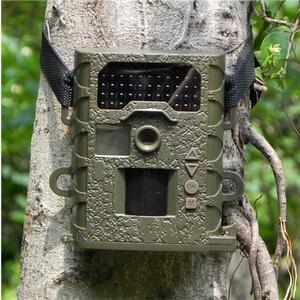 2014新款苍鹰SG-008红外高清自动夜视监测仪