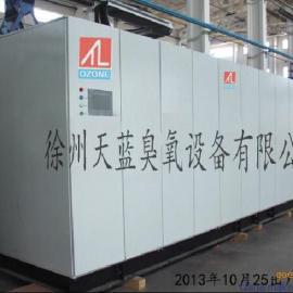 供应天蓝臭氧大型6公斤臭氧发生器
