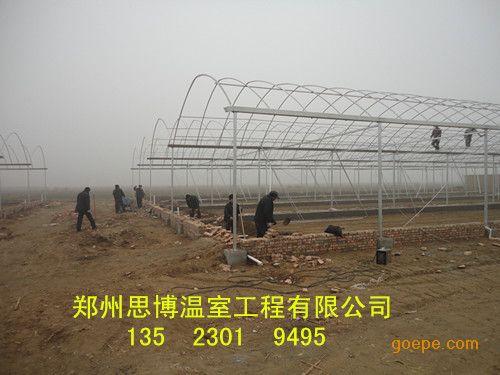 太原现代蔬菜大棚建设洛阳简易拱棚报价