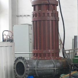 大流量潜水式螺旋离心泵-抽取活鱼活虾离心泵