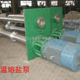 高温熔盐泵,RXB高温熔盐循环泵