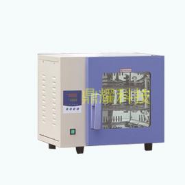 智能程控型鼓风干燥箱 工业高温烘烤箱 恒温箱 东莞