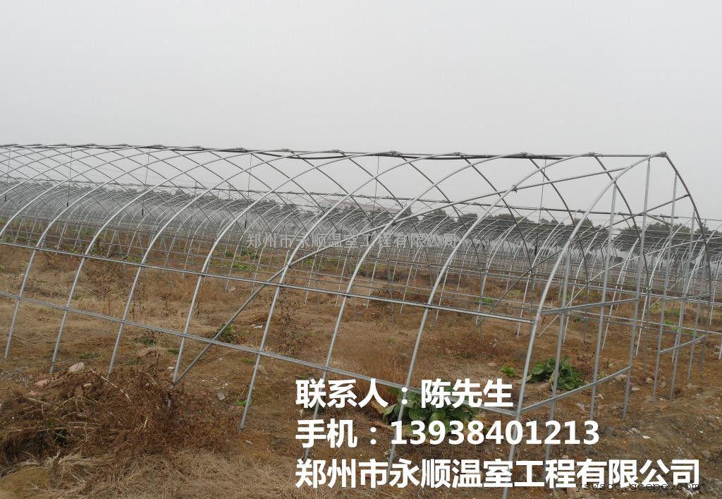商丘蔬菜温室大棚建造