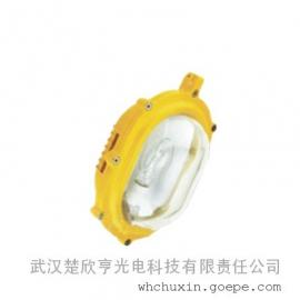 BFE8120内场强光防爆应急泛光 35/70W应急灯具