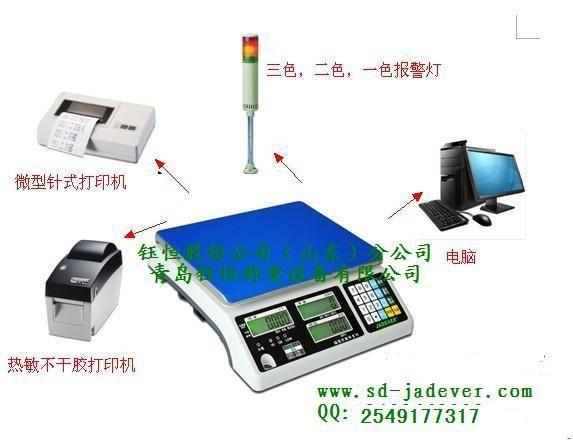 有数据存储功能,数据上传电脑含RS232或USB接口电子秤