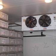 小型冷库方便快捷节能更环保