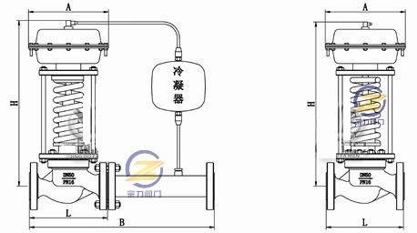 zzyp/m自力式压力调节阀 (连接尺寸图)图片