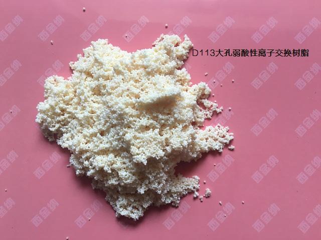 D113FC大孔树脂