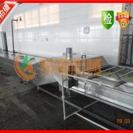 提供希源优质豆干卤制蒸煮机 XY6500全自动蒸煮机 畅销