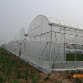 充气膜连栋温室 设计建造施工