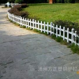 农村绿化围栏网供货【绿化围栏网】厂家