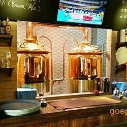 自酿酒设备300升精酿啤酒设备价格