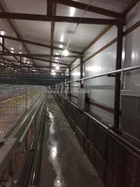 猪舍环保升温采暖设备 自动控温采暖恒温效果明显养殖升温锅炉