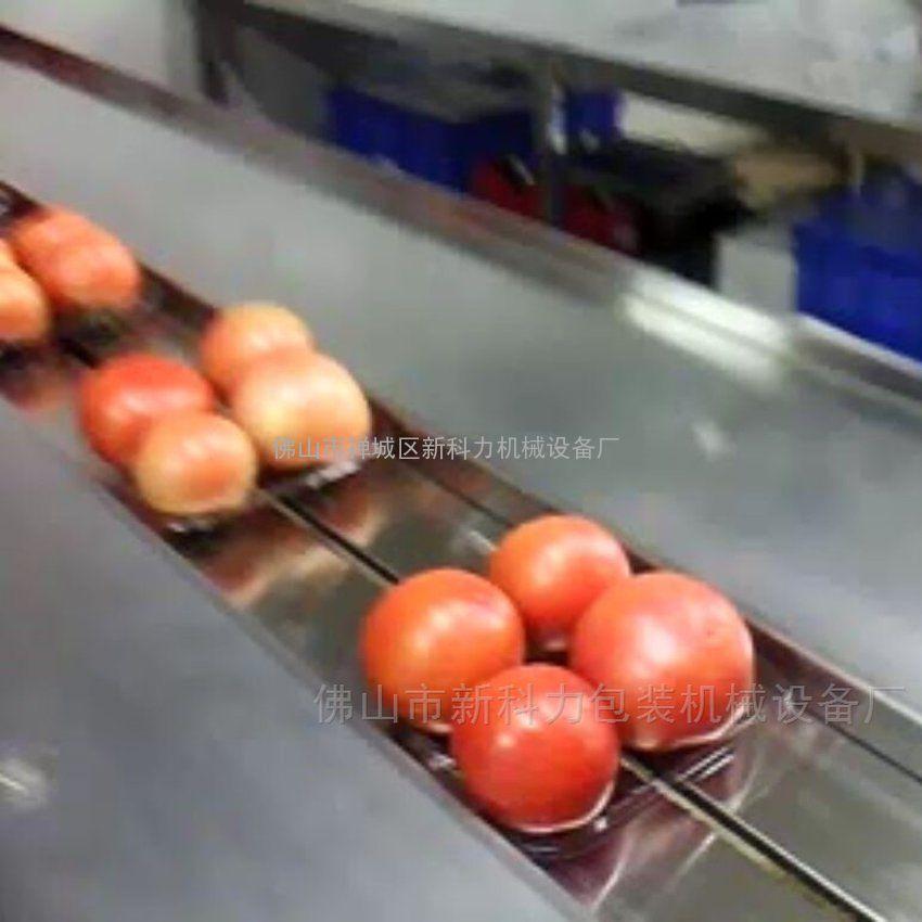带托盒樱桃包装机 新鲜樱桃超市装带托盒自动包装机 樱桃打包机