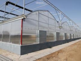 阳光板温室大棚/PC板温室/智能采光板温室大棚设计