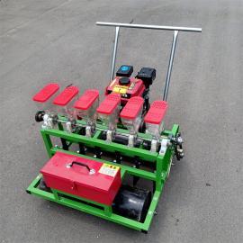 播种机农用精播新款小型手推电动自动谷子多功能蔬菜