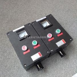 言泉电气FZC-S-A2B1G黑色塑料挂式两扭 一表防水防腐防尘动力操作柱