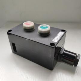 言泉电气FZA-A 2工程塑料防水按钮开关/防水防尘控制盒