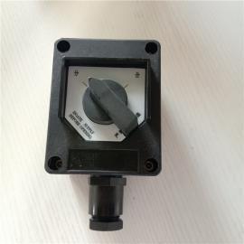 双控防爆防腐照明开关,BZM8060-16A型号依客思