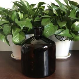 德国普兰德127065大玻璃试剂瓶,棕色,2000ml,无盖,瓶口规格 29/32
